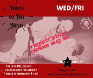 Jiu Jitsu Six-Week Intro Program